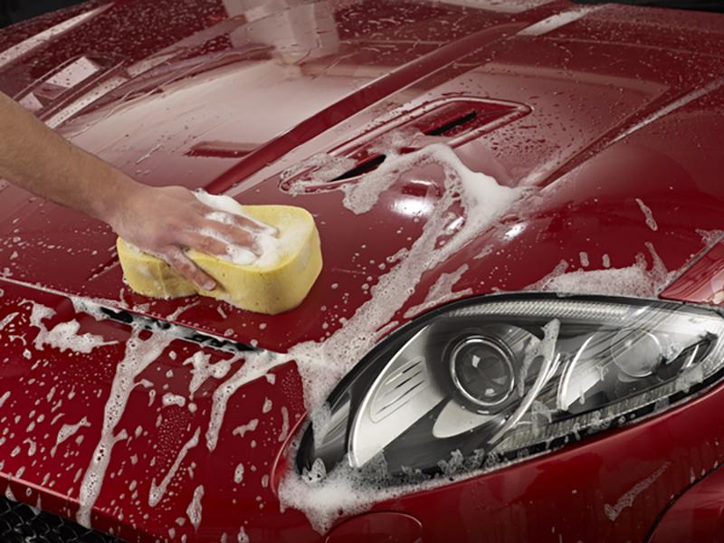bodywork_shampoo_conditioner__agitate_with_sponge